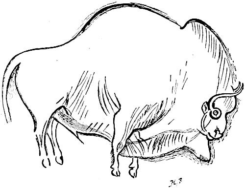 Font_de_gaume_bison